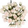 Spray Roses White Majolica By the Box 120 Stems