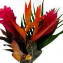 Tropical Bouquets 10 Bunches