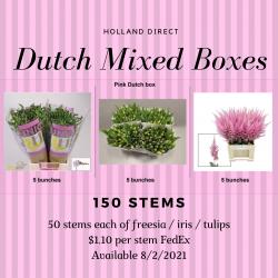 Dutch Mixed Boxes / 150 Stems