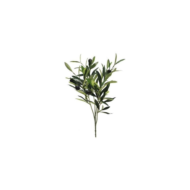 Branch Olice