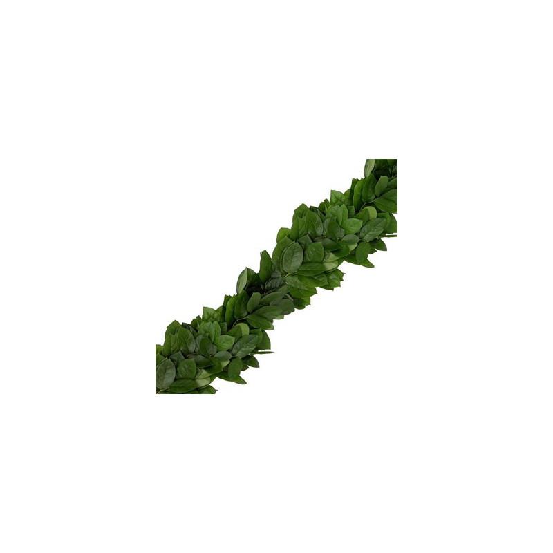 Salal Lemon Leaf Garland PRICE PER FOOT