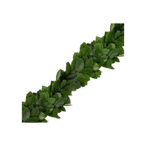 Salal (lemon leaf) Garland PRICE PER FOOT