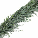 Baby Blue Eucalyptus Garland PRICE PER FOOT