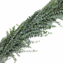 Baby Blue Eucalyptus Garland PRICE PER FOOT