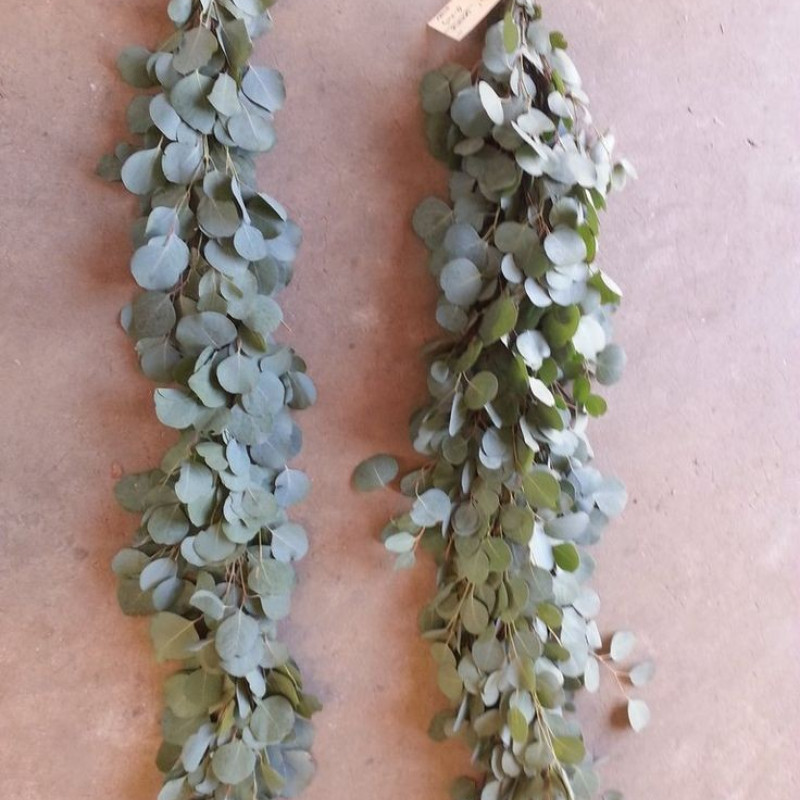 Silver Dollar Eucalyptus Garland PRICE PER FOOT