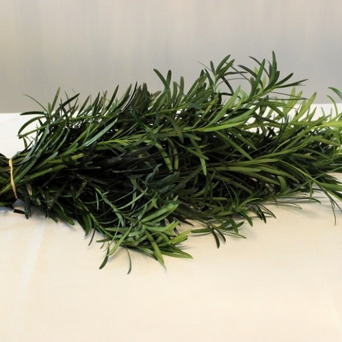 Weeping Podocarpus Garland PRICE PER FOOT